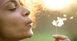 A Practical Resource Guide to Managing Your Summer Allergies